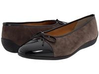 德国ara鹦鹉女鞋正品代购真皮套脚便鞋瓢鞋蝴蝶系带平底单鞋Bella